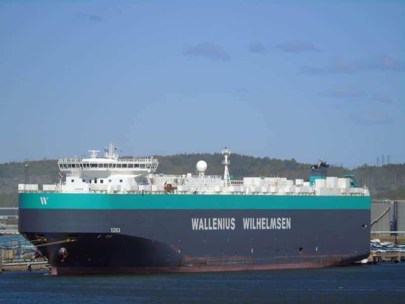 Tijuca RoRo Ship