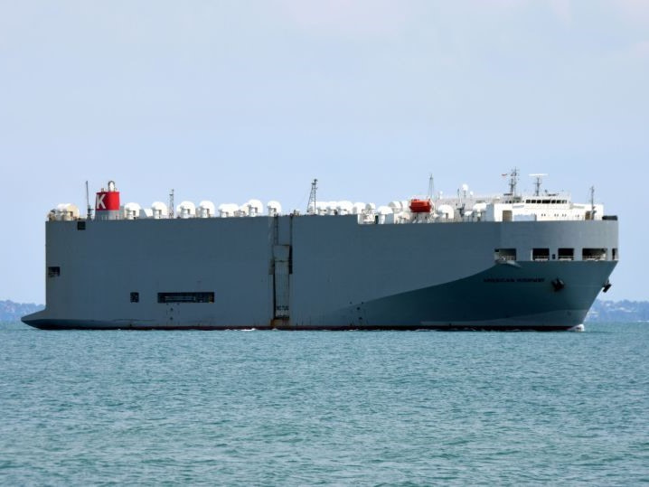 RoRo Ship,Ship Fleet List,Fleet List